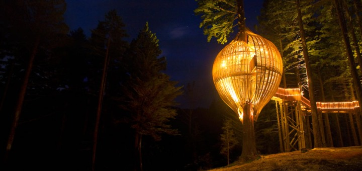 yellow-treehouse-restaurant-1